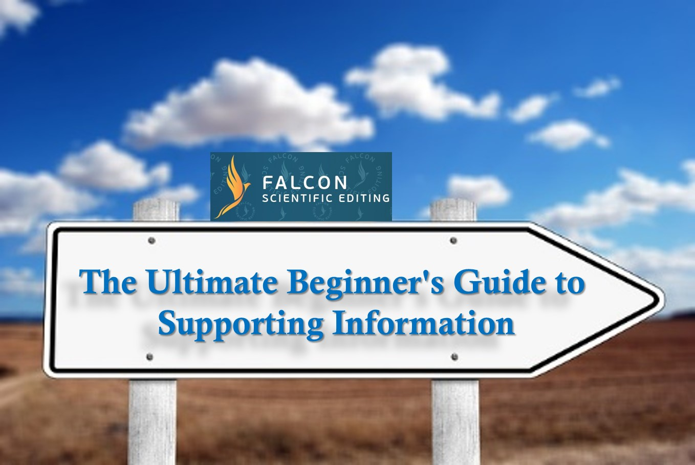 The Ultimate Beginner's Guide to Supporting Information for Scientific Articles